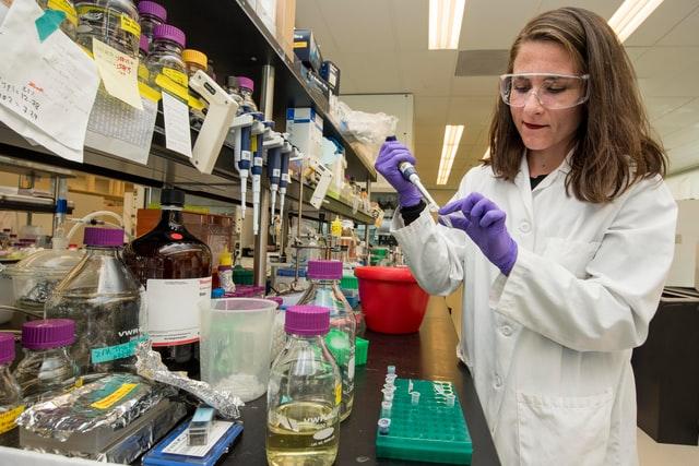 feminismo en la ciencia